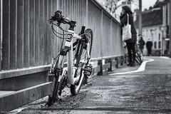 bestohlen? (Bikerwolferl) Tags: städtischestrase stadtleben stadt monochrom blackandwhite street bicycle outdoors urbanscene citylife road city modeoftransport monochrome cycle streetfotografie