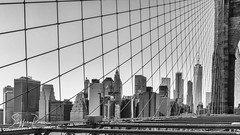 Manhattan skyline frm Brooklyn Bridge (svpe4711) Tags: bw ny usa amerika a6000 bridge stadt blackwhite himmel us newyork sony vacation brooklyn architecture brooklynbridge bluesky schwarzweis blue urban bigapple wires travel nyc blau sw sky manhattan america skyline city blauerhimmel