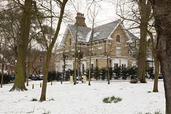 CP Snow | Feb 2018-7 (Paul Dykes) Tags: crystalpalace london england uk gb unitedkingdom snow uksnow londonsnow