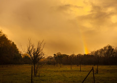 Just believe you can (ursulamller900) Tags: orchardmeadow pentacon2829 rainbow regenbogen landscape landschaft hff fence zaun