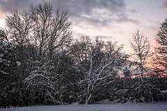 Snowy Sunrise (jwfuqua-photography) Tags: snowice pennsylvania jwfuquaphotography jerrywfuqua sunrisesunset weather buckscounty nature