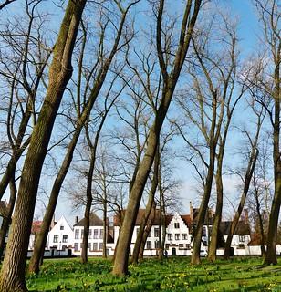 (79) Allemaal Brugge - Have a nice Weekend!