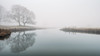 natures cloak (akh1981) Tags: fog frost wideangle walking water riverbrathay reflections travel trees tranquil nikon nisi nature nationalpark nationalheritage landscape lakedistrict cumbria clouds countryside calm manfrotto mist outdoors beautiful sunrise amateurphotography uk unesco