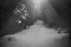 Walk into the light (Helena Normark) Tags: path beautifullight flare heimdal trondheim sørtrøndelag norway norge sonyalpha7 a7 50mm lensbaby edge50 lensbabyedge50 lensbabylove seeinanewway