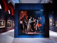 Exposition tableaux (thierrybalint) Tags: musée museum palais longchamp marseille tableaux peinture exposition expo beauxarts