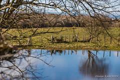 20180311_163335_0042 (Olivier_1954) Tags: vacances france balade wissant ciel eau paysage reflet séjour visite hautsdefrance fr