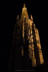 The Church of Our Lady (Daniel James Greenwood) Tags: bruges brugge danielgreenwood danielgreenwoodphotography canong7xmii canonpowershotg7xmii canonpowershot belgium