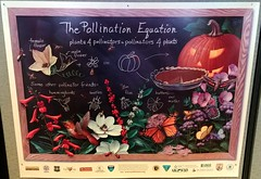 Pollination and pumpkin pie (Will S.) Tags: mypics poster science biology pollination government