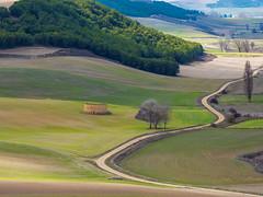 ¡Estos campos no espoxigan! (Jesus_l) Tags: europa españa valladolid peñaflordehornija valledehornija camposdecastilla jesúsl