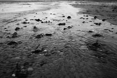 Flow (MobilShots) Tags: blende1net patrickgorden beach fotografhamburg fuji fujifilm laboe ostsee outdoor sand sea strand urban water xt1 blackandwhite monochrome wett stones nature