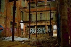 Fresh (SCOTTS WORLD) Tags: adventure abandoned america architecture graffiti fun detroit digital decay dilapidated detail 313 exploring empty urban usa unitedstates urbex urbanexploring urbandecay brick building brown blight light panasonic pov perspective ruin rusty city crusty michigan motown midwest motorcity manufacturing february 2018 tree snow winter