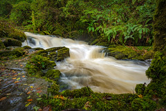 Torc Downstream (APGougePhotography) Tags: ireland torc water waterfall kerry killarney ring national park green flow lush nikon travel d800 nikond800 tumbling