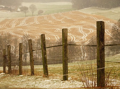 the last bit of winter (peterpe1) Tags: winter flickr peterpe1 hattingen ruhrgebiet felder