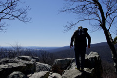 Chimney Rock (beyond_the_sea01) Tags: nps catoctinmountainpark forest trees human hiker hiking overlook chimneyrock sky cloudless wideangle