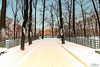 The sate Russian Museum (Tony_Brasier) Tags: icecold outdoors museum snow snowing tamron trees nikond7200 1116mm fantastic lovely location fun green buildings loving russia saintpetersburg