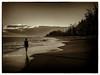 Kauai (4tun8bug) Tags: reflection quiet peaceful person beach shore waves landscape monochrome sunset forest sand surf clouds horizon iphone outdoors walking shadows kauai hawaii footprints