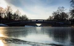 Winter in Nymphenburg 4 (lichtauf35) Tags: amnymphenburgerkanal winterfun münchen derzeitaugenblickestehlen favouriteplaces frozen bridge vanishing schlossnymphenburg reflection lichtauf35