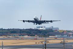 Asiana A380 Takeoff from Tokyo Narita Airport (kuyu-peach) Tags: 2018 aircraft airplane dslr narita naritaairport nikon nikond750 tamronsp150600mmf563divcusd air aviation cloud engine runway sky takeoff travel wing world