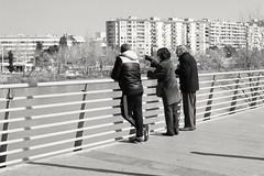 Observing the flood of the Ebro river. (Fencejo) Tags: canon600dt3ikissx5 canonef40mmf28stm blackwhitebwstreetcityblackandwitestreetphotographymonochrome ebro ribera zaragoza river