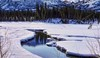 Open Water! (JLS Photography - Alaska) Tags: alaska alaskalandscape landscape jlsphotographyalaska water watercourse stream pond creek beautifulscenery forest landscapes lastfrontier mountains melting spring march breakup snow trees