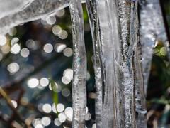 ice against water - 2 (apalca) Tags: gelderland ijs liendensewaard ice icicles water frost icesculpture
