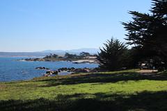 IMG_7561 (mudsharkalex) Tags: california pacificgrove pacificgroveca