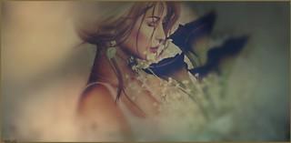 Weddings @ LYRICS by Chant Lyric -