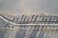 Driveway (tlrichmnd) Tags: snow winter frost wood sky water fixedlink outdoor top cold line long standing nature noperson freezing sitting ice frozen side outdoors weather park landscape field wooden fairweather old fence desktop season ocean sand environment agriculture djiphantom4pro drone aerial alberta canada