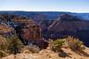 Layers of the Grand Canyon (Ron Drew) Tags: nikon d850 arizona az usa grandcanyonnationalpark grandcanyon desert cliff canyon trees snow landscape outdoors winter southrim rim park overlook