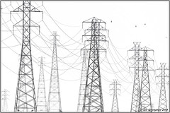 Steel, Cable And Birds (pandatub) Tags: landscape baylands paloalto