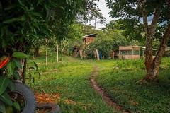 L E J A N O - 1 (carlosmunante) Tags: alejado bosque casa lejano verde natural vida naturaleza familia cielo arboles luz espacios vivir animales camino color paisajes