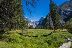 Yosemite.Village.2600p.187 (l.dardennes) Tags: yosemite yosemitenationalpark california usa canoneos7dmarkii sigma1750mmf28 étatsunis us