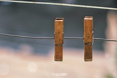 Old clothes peg (Mahmod Nofal) Tags: clothespeg wood