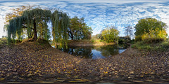 Rotehornpark im Herbst (360 x 180) (diwan) Tags: germany deutschland sachsenanhalt saxonyanhalt magdeburg city stadt place rotehorn adolfmittagsee wasser water brücke bridge himmel sky wolken clouds herbst autumn fall bäume trees blätter leaves outdoor fotogruppe fotogruppemagdeburg roundabout equirectangular spivpano 360° circularpatternrectified panoramix panorama stitch ptgui walimexprofisheye835 canoneos650d canon eos 2016 geotagged geo:lon=11644757 geo:lat=52117071