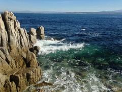 IMG_2289 (mudsharkalex) Tags: california pacificgrove pacificgroveca
