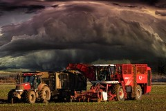 Lull before the storm. (bainebiker) Tags: harvesting farming agriculture farmland clouds sky stormyweather field beeteater vervaet machinery tractor canonef100400mmf4556lis