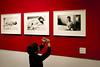 Piccolo ritrattista (o.solemio) Tags: photo n° 440 minoosolemio bambino fotografo mostra fotografica ritratti fotocamera parete rossa fotografie cornici interno colore leicavlux