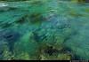 20160614_02 Deep, blue-green pool in the river Valldøla near Gudbrandsjuvet, Norway (... It looked deeper IRL ^_^ ) (ratexla) Tags: ratexla'snorwaytrip2016 norway 14jun2016 2016 canonpowershotsx50hs norge scandinavia scandinavian europe beautiful earth tellus earthporn photophotospicturepicturesimageimagesfotofotonbildbilder europaeuropean summer travel travelling traveling norden nordiccountries roadtrip wanderlust journey vacation holiday semester resaresor landscape nature scenery scenic ontheroad sommar norwegian valldøla river älv flod clear glassy klar klart glasklar glasklart kristallklar kristallklart crystalclear water vatten blue blå blått catchycolorsgreen favorite