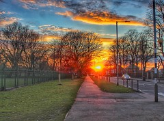 Scorching sunset! 😁🌞😁🌞 (LeanneHall3 :-)) Tags: sunset fierysunset sun sunshine street streetlamps cars hull kingstonuponhull skyscape sky orange red yellow blue white clouds green grass landscape canon 1300d trees branches cloudsstormssunsetssunrises