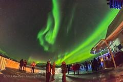 Aurora Watchers on m/s Nordnorge #2 (Amazing Sky Photography) Tags: auroraborealis northernlights hurtigruten nordnorge deck ship observers watchers norway troms㸠tourists alberta canada tromsø