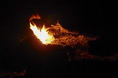 DSCN4244 (David J. Thomas) Tags: mirrorlake blanchardspringsrecreationarea fiftysix mountainview arkansas forestfire proscribedburn flames