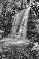 The Ever Present Flow (Alex Luyckx) Tags: hiltonfalls haltonconservationauthority haltonconservation waterfall hike trail walk brucetrail milton ontario canada winter nature trees water sony sonya6000 sonyepz1650mm13556oss digital compactsystemcamera
