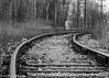 Deserted Tracks (vernonbone) Tags: 2018 blackwhite curves february nikond3200 rails sigma105mm traintracks