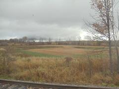 DSC01420 (mistersnoozer) Tags: lal shoertline railroad rgvrrm excursion train