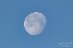 The waning gibbous moon.