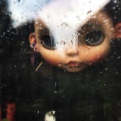 Rain (Tiina Vanhatupa) Tags: catmodoll customblythe
