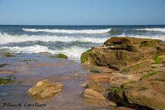 Waves and Rocks (ChrisF_2011) Tags: florida marineland rivertosea beach scenic landscape sand coquina