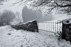 Gate and Wall (_J @BRX) Tags: longwood huddersfield kirklees yorkshire england uk march 2018 colnevalley winter nikon d5100 snow blackandwhite bw landscape field fence white mist fog path tree gate wall