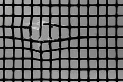 Imperfect Prison (Eric Tischler) Tags: macromondays imperfection