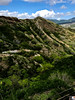 On the trail to the top of Diamond Hill - Waikiki 2017 4a (litlesam1) Tags: hawaii oahu neverendingbirthay2017 november2017 waikiki diamondhead